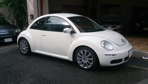 New_beetle_1